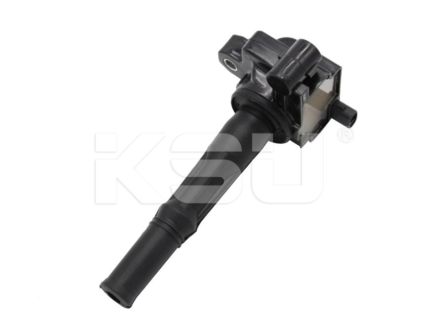 TOYOTA-90919-02213,DELPHI-GN10299,NGK-48838 Ignition Coil